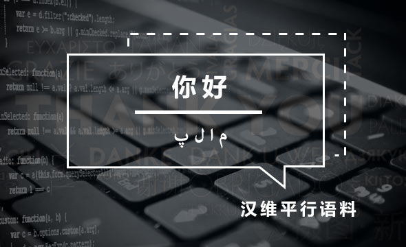 Data Products_Datatang_100,000 Groups - Chinese-Uighur Parallel Corpus Data