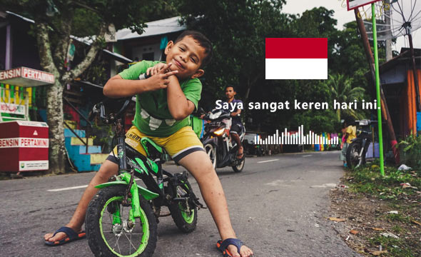 Data Products_Datatang_639 Hours - Indonesian Speech Data by Mobile Phone
