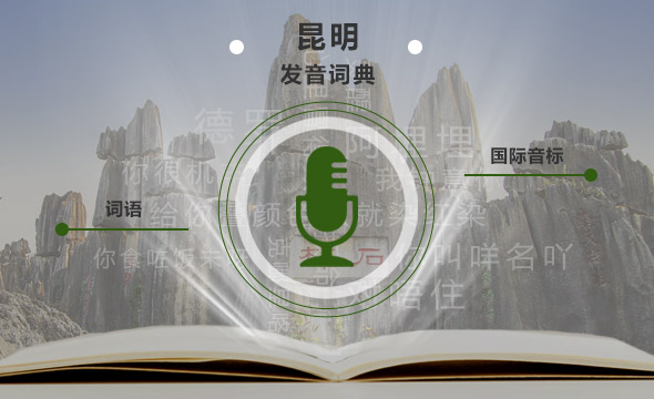 66,291 Kunming Dialect Pronunciation Dictionary_Speech Data Solutions_Datatang_66,291 Kunming Dialect Pronunciation Dictionary