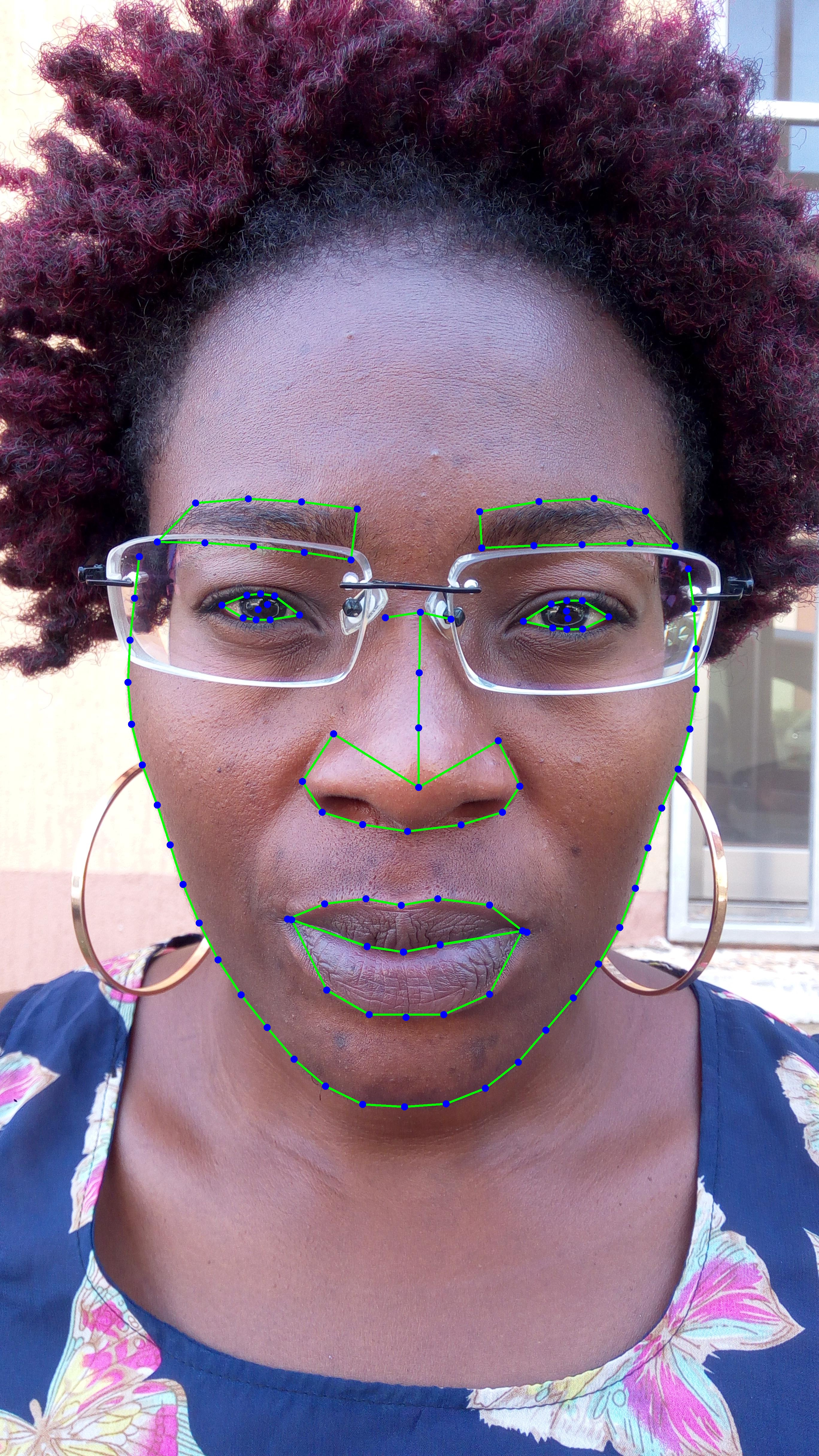 87,877 Images of 106 Facial Landmarks Annotation Data (complicated scenes)_Mobile APP Data Solution_Datatang