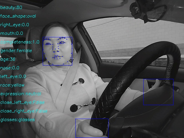 103,282-Images Driver Behavior Annotation Data_Autonomous Driving Data Solution_Datatang