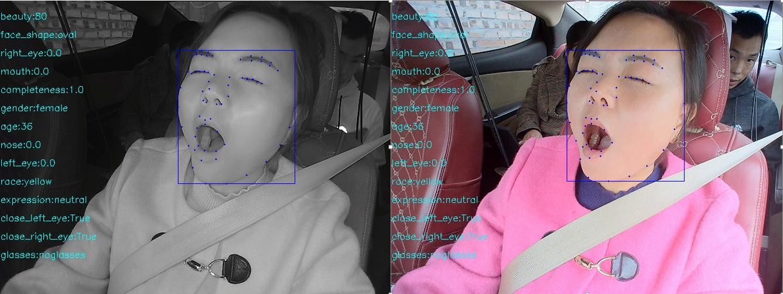 103,282-Images Driver Behavior Annotation Data_Self Driving Data Solution_Datatang