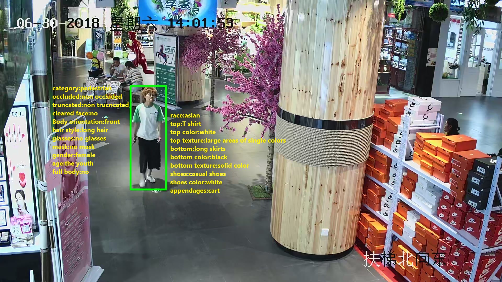 210,188 Bounding Box Human body Attributes Annotation_Intelligent Security Data Solution_Datatang